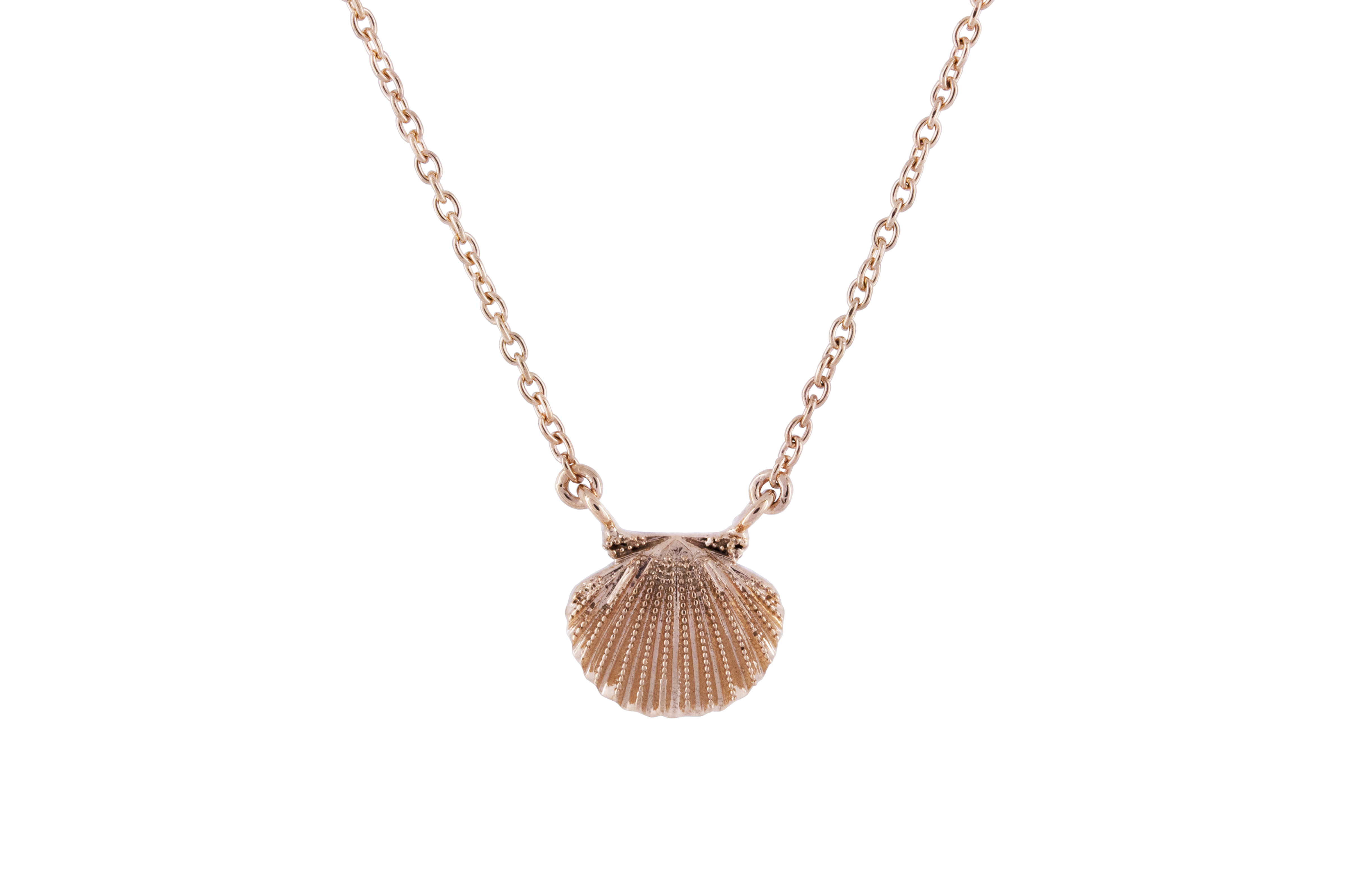 Seashell necklace in Rose Gold